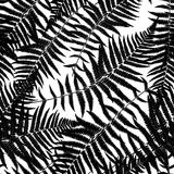 Fern Leaf Vector Fern Leaf Vector Seamless Pattern Background Il. Lustration  EPS10 Stock Photo