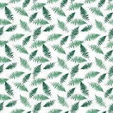 Fern Leaf Vector Fern Leaf Vector Seamless Pattern Background. Illustration  EPS10 Stock Image