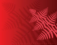 Fern leaves. Vector fern leaves on red background Stock Photography