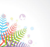 Fern leaves. Design of colorful fern leaves Stock Photos