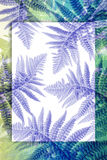 Fern leaves on artistic background with copy space. Exotic Fern leaves on artistic background with copy space Stock Image