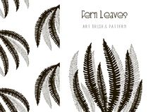 Fern Leaves Design. Art Brush and Pattern. Vector. Black Hand Drawn Fern Leaves. Floral Design Element. Object, Color and Size adjustable Flexible Art Brush and Stock Photos