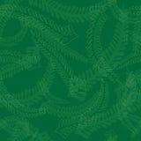 Fern Leaves Pattern senza cuciture nei colori verdi Immagini Stock