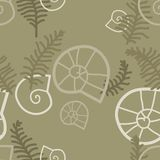 Fern leaves and snail conchs. Vector background Stock Image