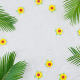 Fern leaves and yellow paper flowers. On muslin fabric with copy space Royalty Free Stock Images