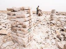 Fern Männer, die fern Salz von den Salzebenen in der Region, Danakil Dep gewinnen Stockbild