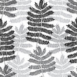 Fern motif nand drawn pattern. Green forest. Seamless pattern. Vector background. Royalty Free Stock Photos