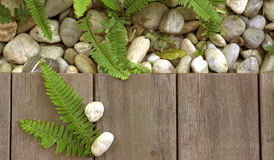 Fern and pebble stone on wood floor texture top view for product Stock Image