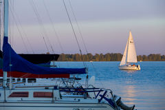 Fern Ridge Reservoir Sailboat fotografia stock libera da diritti