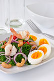 Fern salad. With boiled egg, traditional and modern thai food Royalty Free Stock Photos