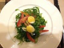 Fern Salad Stockfotografie