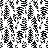Fern seamless background. Black and white Royalty Free Stock Photos