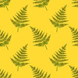 Fern seamless pattern. cartoon illustration for children`s greeting card design, menu, fabric and wallpaper. royalty free illustration