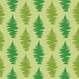 Fern seamless pattern. Vector illustration of dry fern seamless pattern Royalty Free Stock Photo