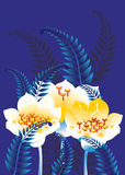 Fern and snowdrop. On a blue background Stock Photo
