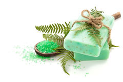 Fern soap. Green soap and fern leaves. Isolated on white background stock photo