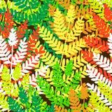 Fern tile. Editable vector seamless tile of fern leaves Stock Photo