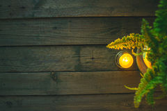 Fern vase on a wooden background royalty free stock photo