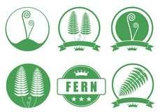 Fern. Vector illustration (EPS 10 Royalty Free Stock Photography