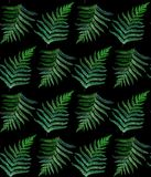 Fern watercolor seamless pattern on black royalty free stock photo
