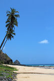 Fernando de Noronha - Brazil stock photo