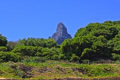 Fernando de Noronha, Brazil Royalty Free Stock Photo