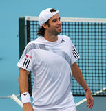 Fernando Gonzalez (CHILE), tennis player Royalty Free Stock Photos