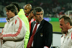 Fernando Santos. At Dinamo Bucharest - Benfica Lisbon Royalty Free Stock Photo