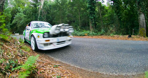 Fernando Teutonio in Rallye Centro de Portugal Royalty Free Stock Image