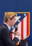 Fernando Torres Stock Fotografie
