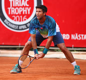 Fernando Verdasco photographie stock
