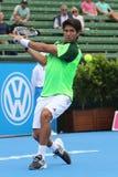 Fernando Verdasco backhanda plasterek Fotografia Stock