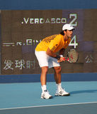 Fernando Verdasco (ESP), tennis player Stock Photography