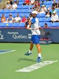 Fernando Verdasco in Montreal 2011 Stockfotografie
