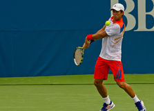 Fernando Verdasco Royalty Free Stock Images