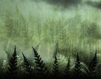 Fernery. Background illustration of green ferns and grunge Stock Images