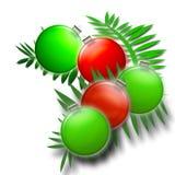 Ferns de Natal em verdes e no vermelho - ornamento do feriado Fotos de Stock Royalty Free