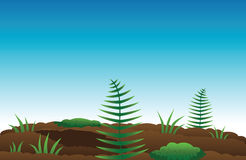 Ferns and moss. Cartoon illustration of ferns and moss Stock Photo