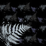 Ferns Pattern Background. With Grunge Effect Royalty Free Stock Images