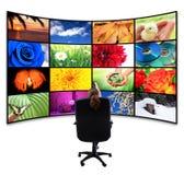 Fernsehapparat-Panel mit Fernsteuerungs Stockfotografie