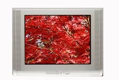 Fernsehapparat und Herbst-Bildschirmanzeige Lizenzfreies Stockfoto