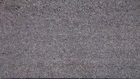 Fernsehen kein Signal Weißes Noize stock video