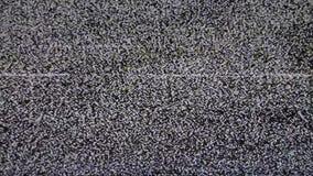 Fernsehen kein Signal Weißes Noize stock footage
