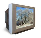 Fernseher mit gefrorenem Baum im Winter Stockbilder