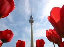 Fernsehkontrollturm, Berlin Stockfoto
