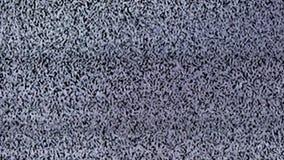 Fernsehstörgeräusch, Schwarzes, weiß stock video footage
