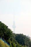 Fernsehturm Berlin TVtorn från Großer Tiergarten Arkivfoton