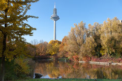 Fernsehturm Frankfurt in Autumn Stock Photography