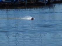 Fernsteuerungsschnellboot Lizenzfreies Stockbild