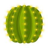 Ferocactus icon, cartoon style. Ferocactus icon. Cartoon illustration of ferocactus vector icon for web Stock Photo